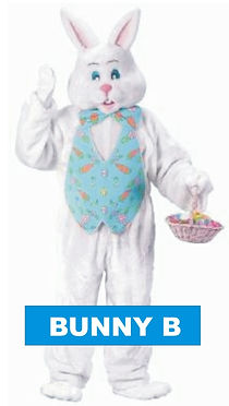 rent a bunny costume