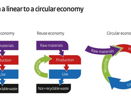 Circular Economy: Imagining a Plastic-Free World