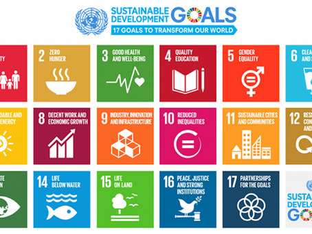 Sustainable Development Goals: The complexity of an integrated framework