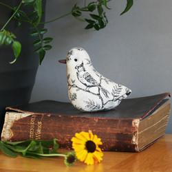 Lav-bird-IMG_6260