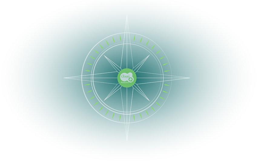 compass4.jpg