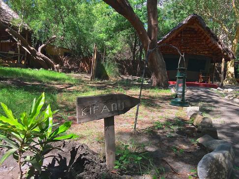 Natron River Camp8.jpg