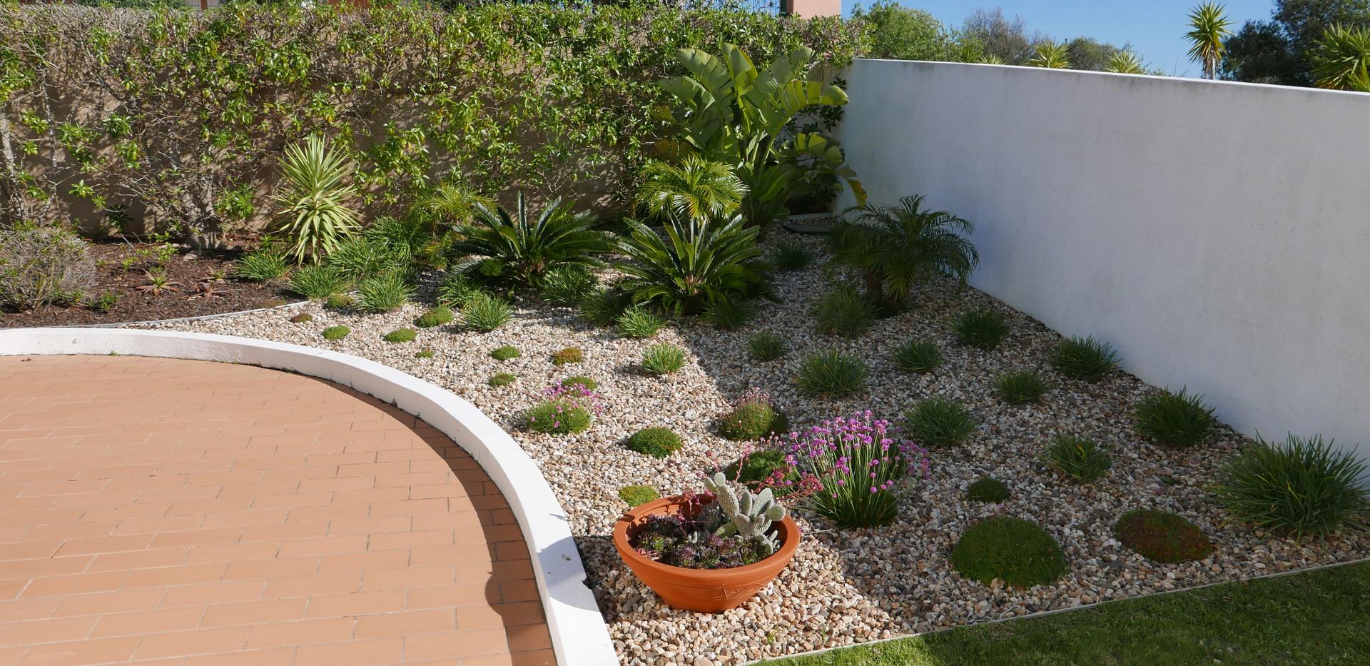 Garden 09.JPG