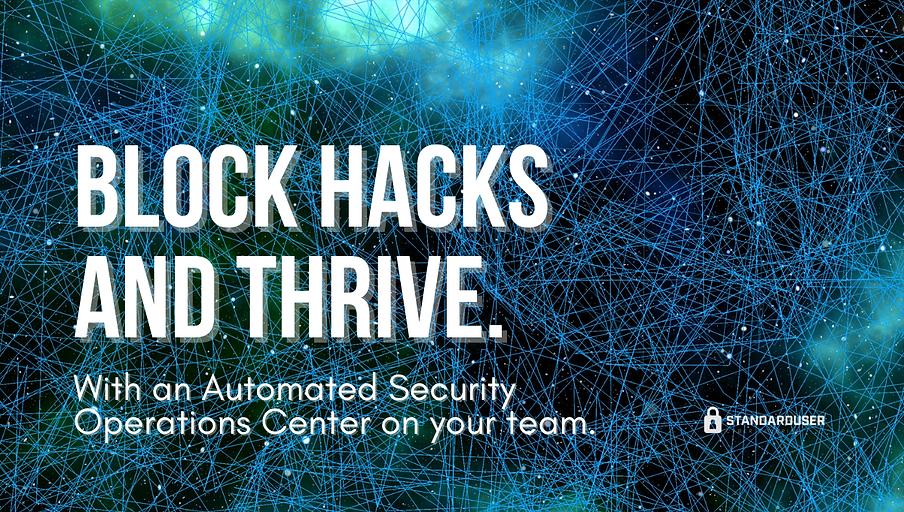 StandardUser-Cyber-Security-block-hacks-