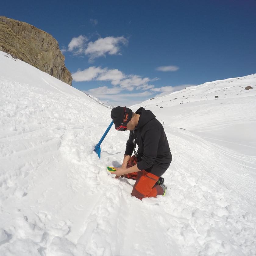 Alpine Course Avalanche Search