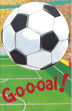 Go-o-oal! Soccer Story