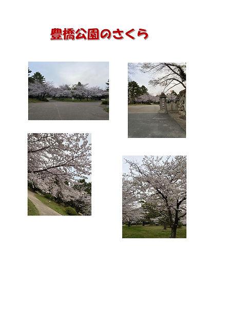 豊橋公園.jpg