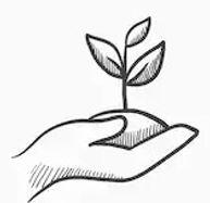 hands-holding-seedling-soil-vector-260nw