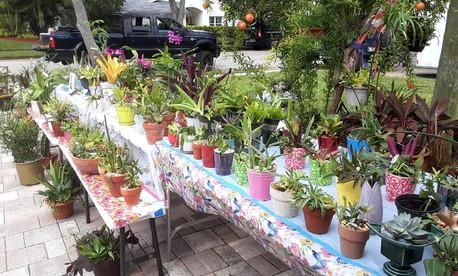 Community Plant Sale