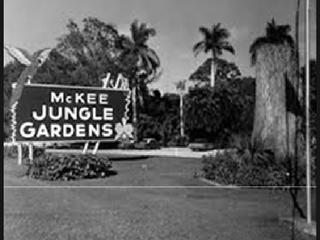 Botanical Garden oftheMonth – McKee BotanicalGarden inVero Beach