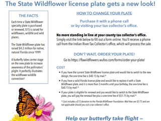 Wildflowers on your car!