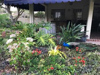 www.gardenate.com/