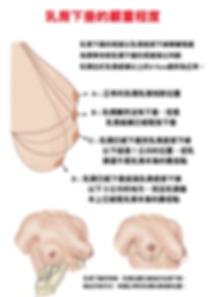 乳房下垂2-01.png