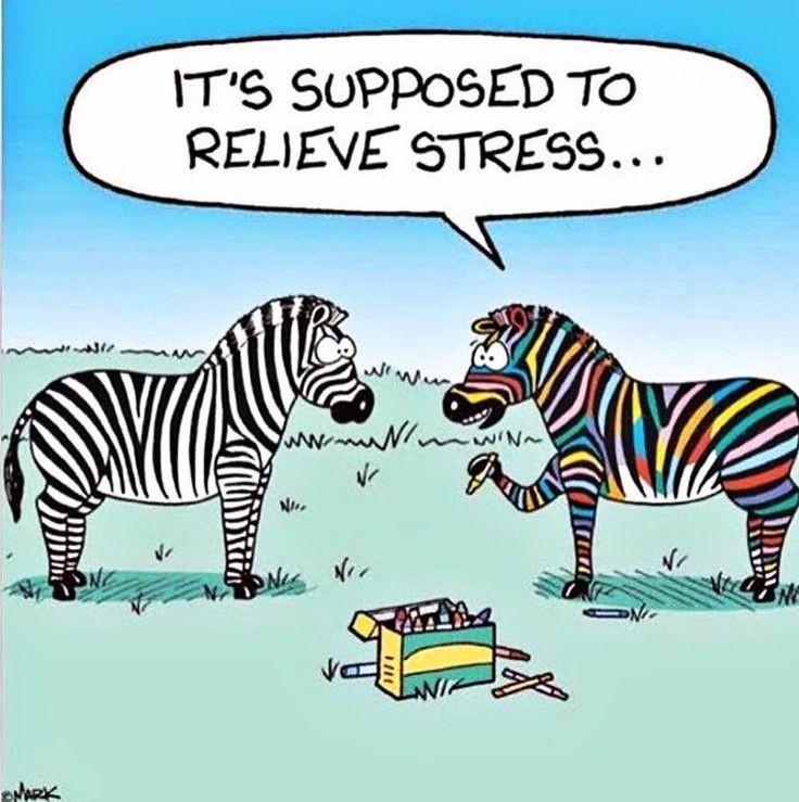 Zebra relieving stress