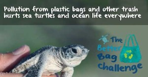 Take the Better Bag Challenge for one year. Save our oceans.