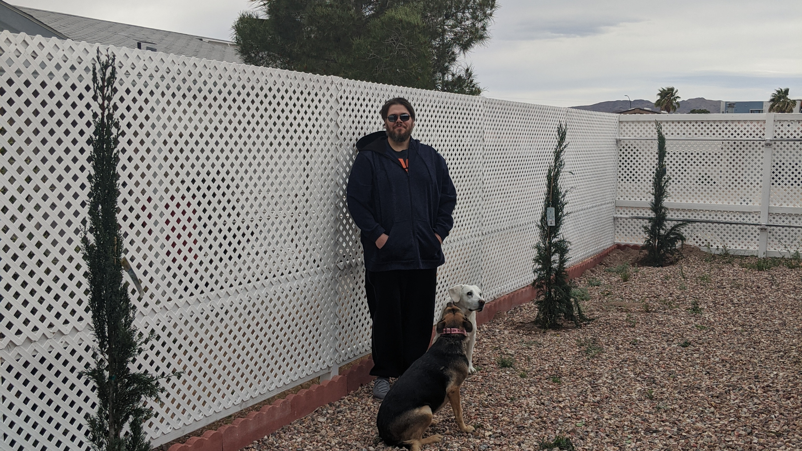 Jason and dogs