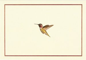 Hummingbird Flight Note Crads