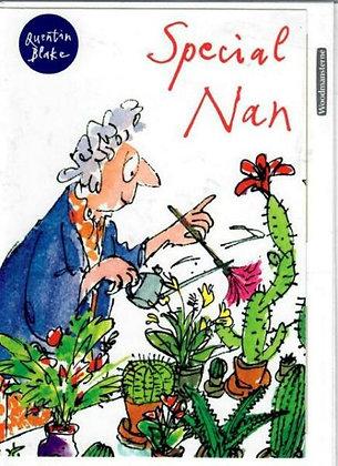 WOODMANSTERNE Special Nan