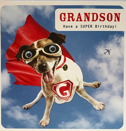 PAPERLINK Have a Super Birthday Grandson