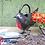 Thumbnail: Robin Watering Can