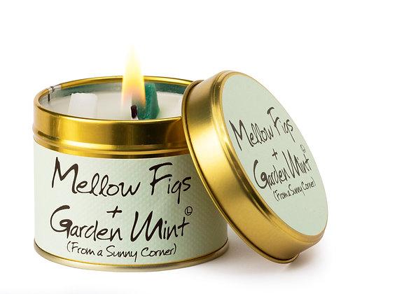 Mellow Figs  and Garden Mint