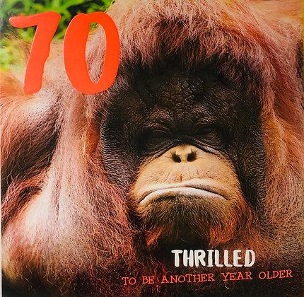 TRACKS 70 Thrilled