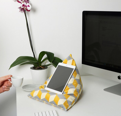 RR381 - iPad/iPhone Cushion