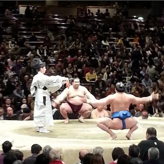 it's Sumo Season baby!