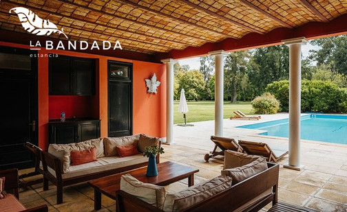 La Bandada.jpg