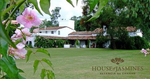 House Jasmines.jpg