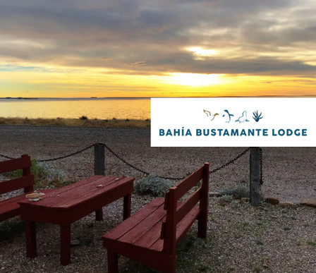 Bahia Bustamante copy.jpg