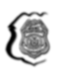 APC Logo.webp