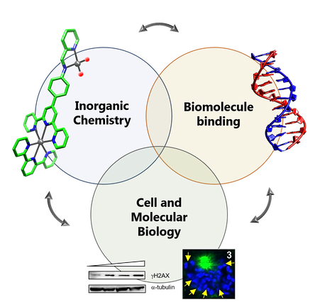 research schematic.tif