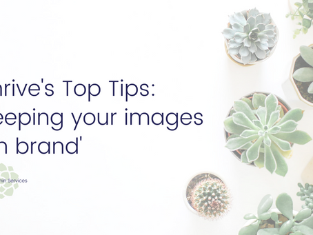 Thrive's Top Tips - Canva