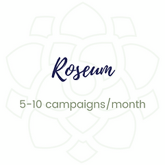 Service - Roseum Email Package.png