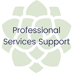 Service - Professional Services Support.
