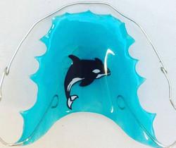 Orca Wrap