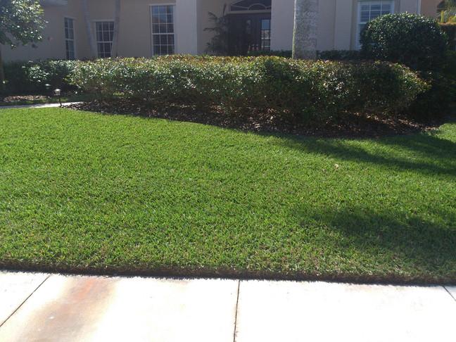 Green Grass House Two .jpg