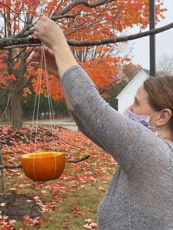 pumpkin les
