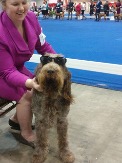 Breda being cool @ Royal Canin