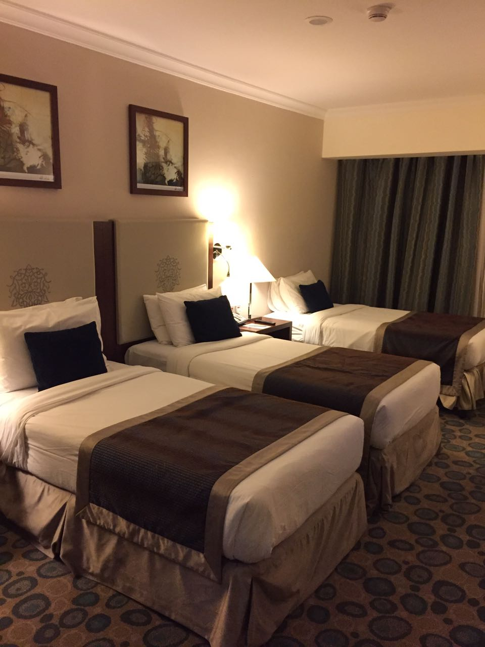 Millenieum Al Aqeeq Hotel