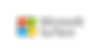 MSSurface_Logo_stacked_C-Gray_RGB.png