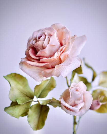 Classic sugar rose