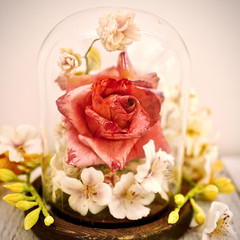 3 Steps to Keep Your Sugar Flowers Forever