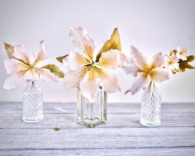 Sugar lilies in a row