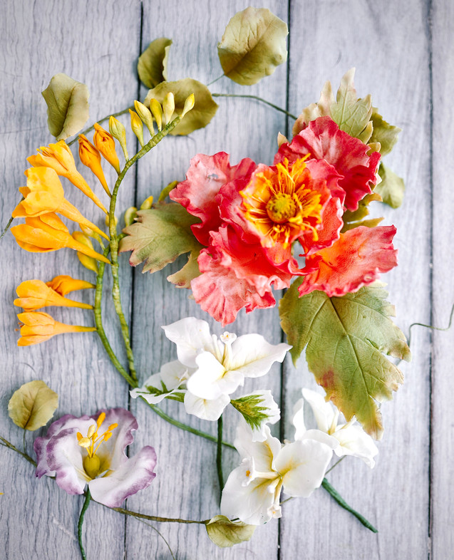 Sugar freesias, poppy, bougainvilleas & lisanthus