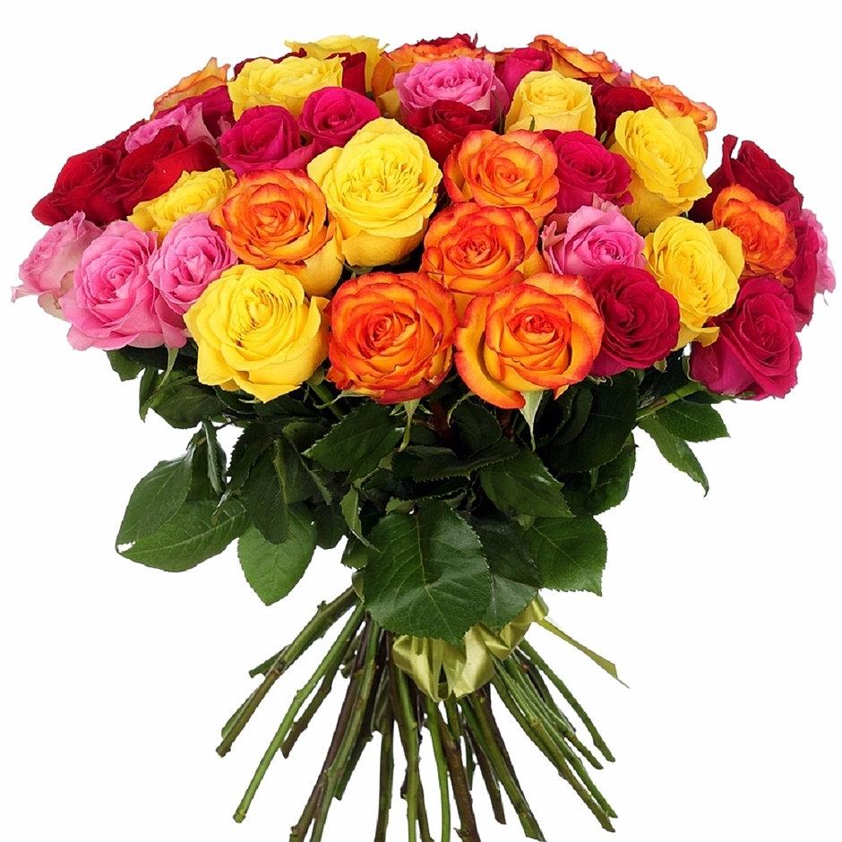 Заказ цветов с доставкой в талине где купить засушенные цветы