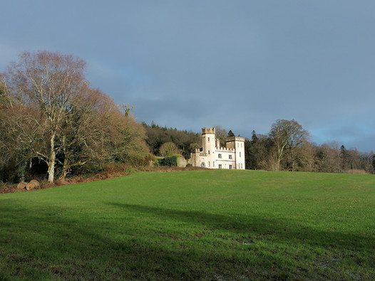 Aherlow Castle.jpg
