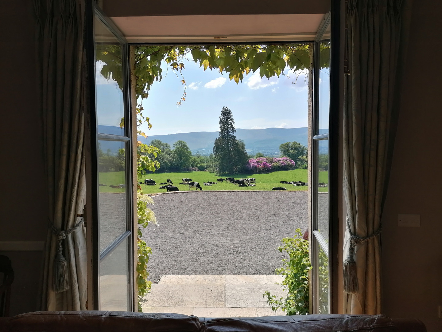 View from front room.jpg