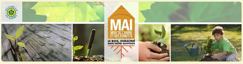 Bandeau_MAF_2020.PNG